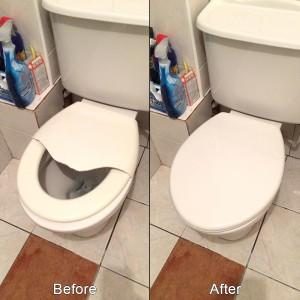 toilet.seat
