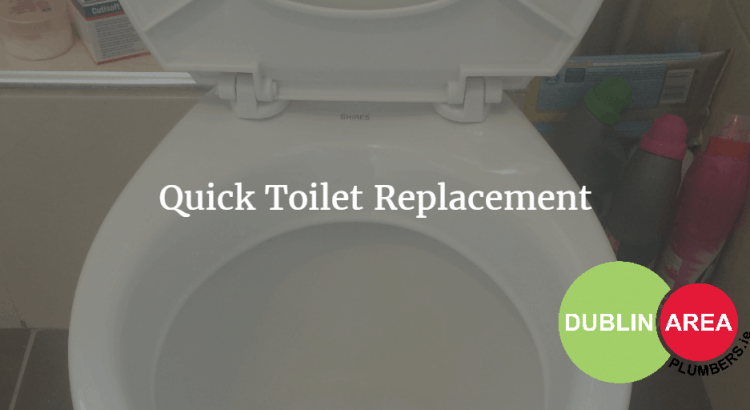 Quick Toilet Replacement