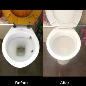 Toilet13.07.16